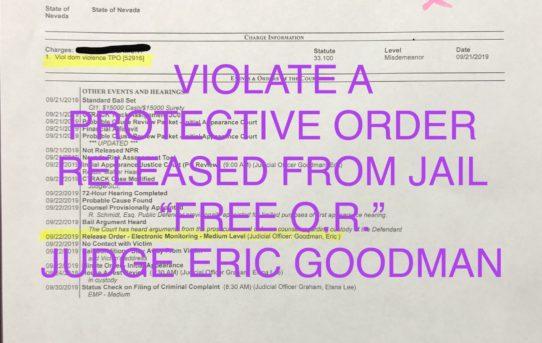 "VIOLATE PROTECTIVE ORDER - ""O.R."" RELEASE JUDGE ERIC GOODMAN"