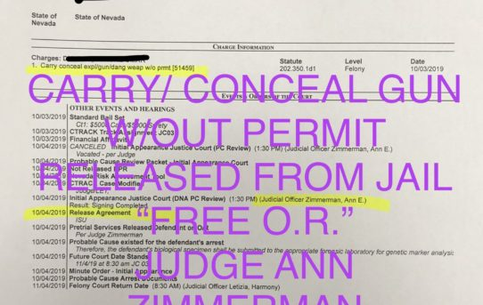 "CARRY/CONCEAL GUN w/OUT PERMIT - ""O.R."" RELEASE JUDGE ANN ZIMMERMAN"