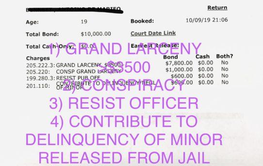 "GRAND LARCENY+CONSP.+RESIST OFFICER - ""O.R."" RELEASE JUDGE SAM BATEMAN"