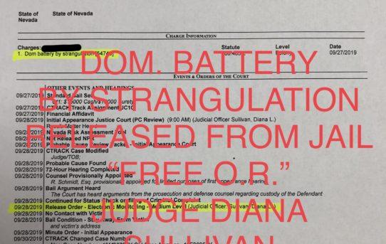 "DOM. BATT. BY STRANGULATION - ""O.R."" RELEASE JUDGE DIANA SULLIVAN"