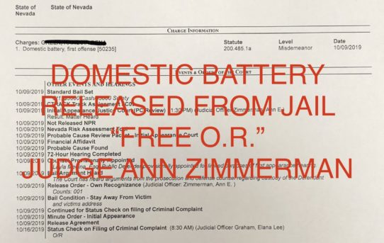 "DOM. BATTERY - ""O.R."" RELEASE JUDGE ANN ZIMMERMAN"