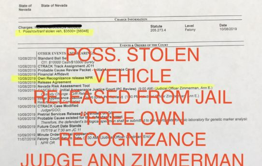 "POSS. STOLEN VEHICLE - ""O.R."" RELEASE JUDGE ANN ZIMMERMAN"