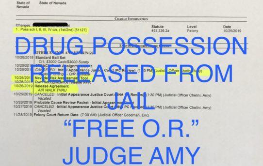 "DRUG POSS. - ""O.R."" RELEASE JUDGE AMY CHELINI"
