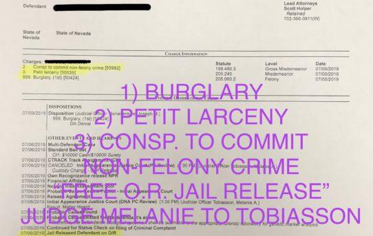 "BURGLARY+PETIT LARCENY+CONSP. - ""O.R."" RELEASE JUDGE MELANIE TOBIASSON"