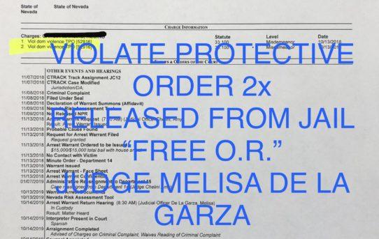 """VIOLATE PROTECTIVE ORDER 2x - """"O.R."""" RELEASE JUDGE MELISA DE LA GARZA"""