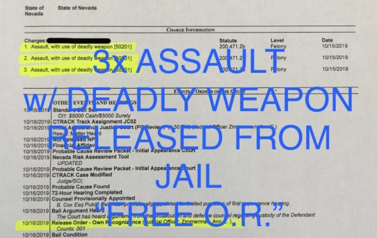 "3x ASSAULT w/DEADLY WEAPON - ""O.R."" RELEASE JUDGE ANN ZIMMERMAN"