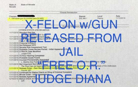 "X-FELON w/GUN - ""O.R."" RELEASE JUDGE DIANA SULLIVAN."