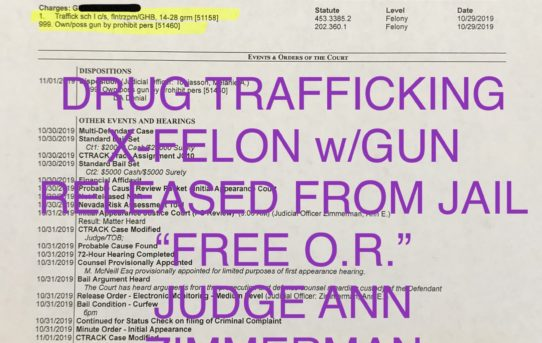 "DRUG TRAFFICKING + X-FELON w/GUN - ""O.R."" RELEASE JUDGE ANN ZIMMERMAN"