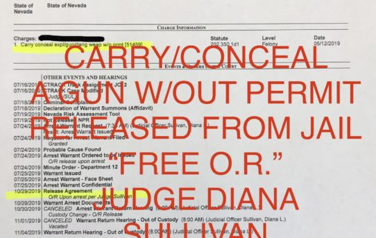 """CARRY/CONCEAL GUN W/OUT PERMIT - """"O.R."""" RELEASE JUDGE DIANA SULLIVAN"""