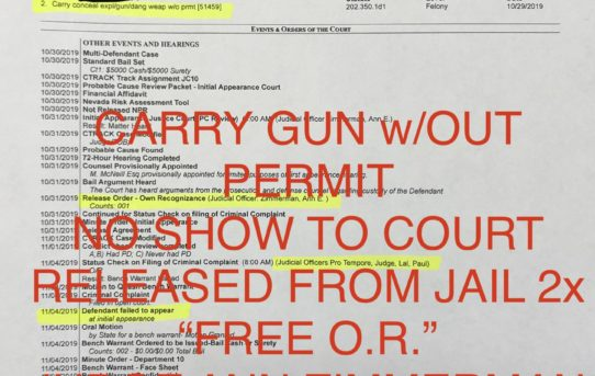 "CARRY GUN w/OUT PERMIT, NO SHOW TO COURT - ""O.R."" RELEASE 2x JUDGE ANN ZIMMERMAN."