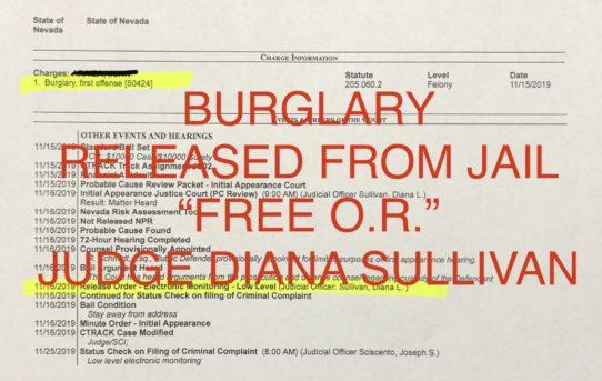 "BURGLARY - ""O.R."" RELEASE JUDGE DIANA SULLIVAN"