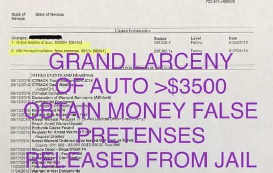 """GRAND LARCENY AUTO >$3500 - """"O.R."""" RELEASE JUDGE AMY CHELINI"""
