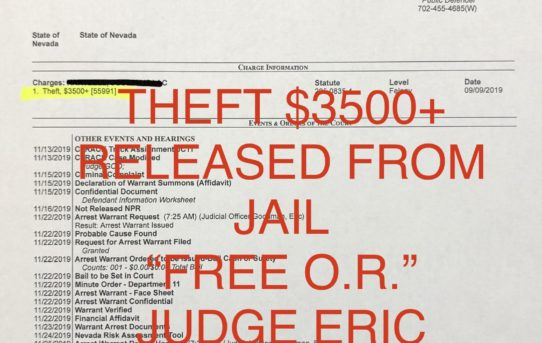 "THEFT >$3500 - ""O.R."" RELEASE JUDGE ERIC GOODMAN"