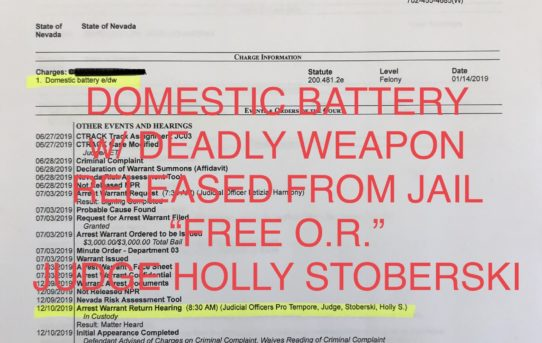 "DOMESTIC BATTERY w/DEADLY WEAPON - ""O.R."" RELEASE JUDGE HOLLY STOBERSKI"