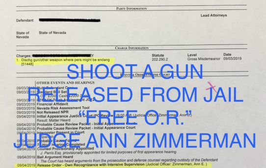 "SHOOT A GUN - ""O.R."" RELEASE JUDGE ANN ZIMMERMAN"