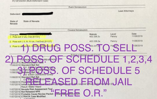 """POSS. OF DRUGS TO SELL - """"O.R."""" RELEASE JUDGE ANN ZIMMERMAN"""