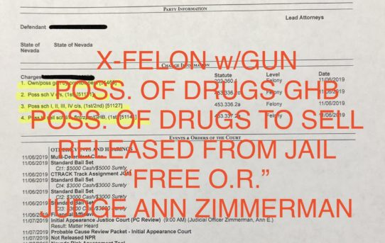 "X-FELON w/GUN + POSS. OF DRUGS GHB TO SELL - ""O.R."" JUDGE ANN ZIMMERMAN"