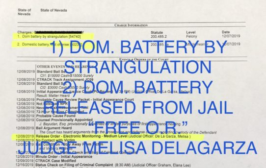 "DOM. BATTERY BY STRANGULATION - ""O.R. RELEASE JUDGE MELISA DELAGARZA"