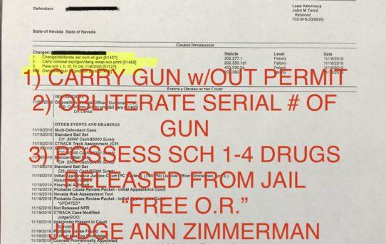 "CARRY GUN w/OUT PERMIT + CHANGE SERIAL # OF GUN - ""O.R."" RELEASE JUDGE ANN ZIMMERMAN"