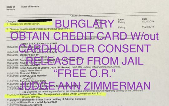 "BURGLARY + CREDIT CARD w/OUT CONSENT - ""O.R."" RELEASE JUDGE ANN ZIMMERMAN"