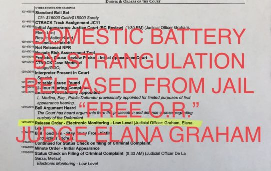 "DOM. BATTERY w/STRANGULATION - ""O.R."" RELEASE JUDGE ELANA GRAHAM"