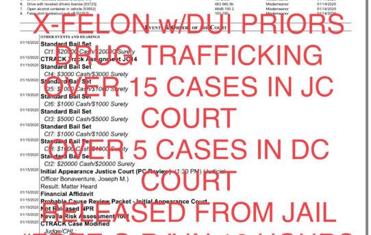 """X-FELON DRUG TRAFFICKING+DUI w/PRIORS - """"O.R."""" RELEASE JUDGE BAUCUM"""