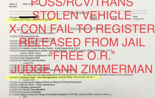 "POSS. STOLEN VEHICLE + X-CON FAIL TO REG. - ""O.R."" RELEASE JUDGE ANN ZIMMERMAN"
