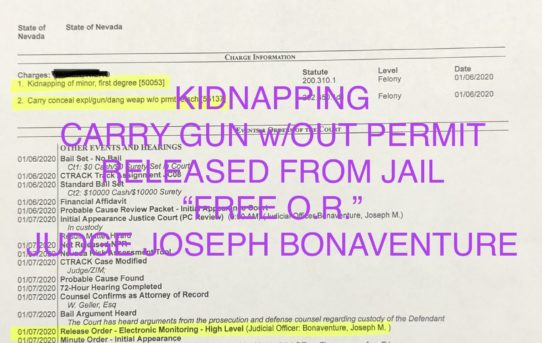 "KIDNAPPING + CARRY GUN w/OUT PERMIT - ""O.R."" RELEASE JUDGE JOSEPH BONAVENTURE"