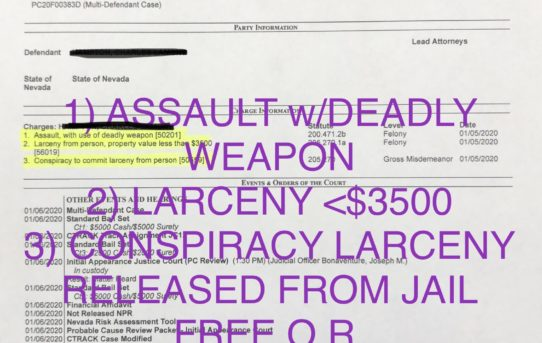 "ASSAULT w/DEADLY WEAPON - ""O.R."" RELEASE JUDGE JOSEPH BONAVENTURE"