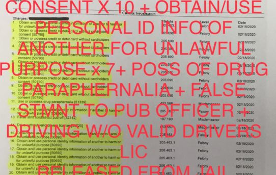 """10 x OBTAIN/ USE  ID OF ANOTHER FOR UNLAWFUL PURPOSE + 7 x OBTAIN/POSS CRED/DEBIT CARD W/O CONSENT + NO VALID DRV LIC IN POSSESSION + FALSE STATEMENT TO PUB OFFICER + POSS OF DRUG PARAPHERNALIA - """"O.R."""" RELEASE JUDGE JOE BONAVENTURE."""