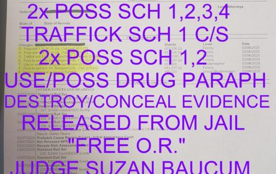 "2x POSS SCH 1,2,3,4 C/S + 2X POSS TO SELL SCH 1,2 C/S + TRAFFICK SCH 1 S/C + USE/POSS DRUG PARAPHERNALIA + DESTROY/CONCEAL EVIDENCE - ""O.R.""  RELEASE - JUDGE SUZAN BAUCUM"