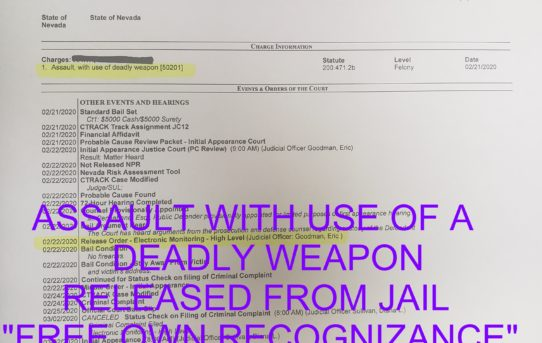 "ASSAULT WITH A DEADLY WEAPON - ""O.R."" RELEASE JUDGE ERIC GOODMAN"