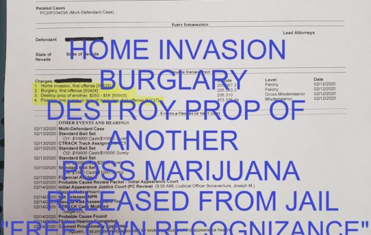 "HOME INVASION+BURGLARY +DESTROY PROP OF ANOTHER + POSS MARIJUANA - ""O.R."" RELEASE JUDGE JOE BONAVENTURE"