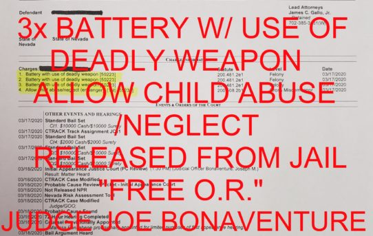 "3x BATTERY W/ USE OF A DEADLY WEAPON + ALLOW CHILD ABUSE/NEGLECT (ENDANGER) - ""O.R."" RELEASE JUDGE JOE BONAVENTURE"