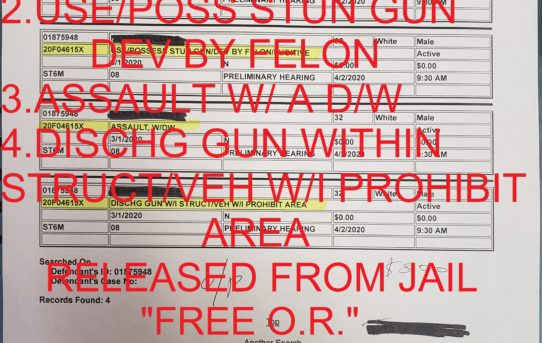 "OWN/POSS GUN BY PROHIBIT PERSON + USE/POSS STUN GUN BY FELON + ASSAULT W/ A DEADLY WEAPON + DISCHG GUN W/I STRUCT/VEH W/I PROHIBIT AREA -""O.R."" RELEASE JUDGE ANN ZIMMERMAN"