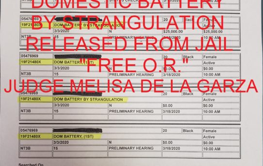 "DOMESTIC BATTERY  +    DOMESTIC BATTERY  BY STRANGULATION      -              ""O.R."" RELEASE JUDGE MELISA DE LA GARZA"