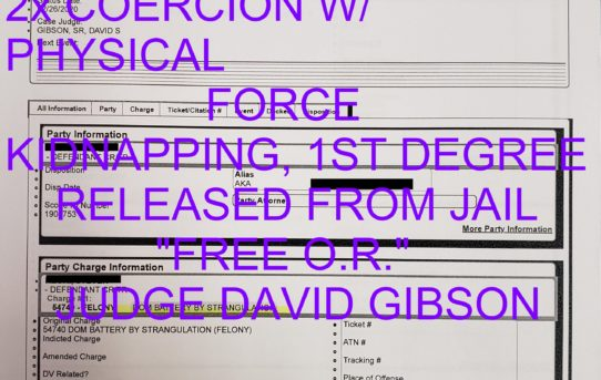 "2x DOMESTIC BATTERY BY STRANGULATION+2x COERCION W/ PHYSICAL FORCE + KIDNAPPING, 1ST DEGREE - ""O.R."" RELEASE JUDGE DAVID GIBSON"