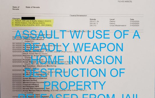"ASSAULT W/ A DEADLY WEAPON + HOME INVASION + DESTROY PROPERTY OF ANOTHER - ""O.R."" RELEASE JUDGE DIANA SULLIVAN"