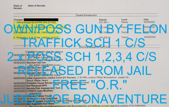 "OWN/POSS GUN BY FELON  +     TRAFFICK SCH 1 C/S +   2 x POSS SCH 1,2,3,4 C/S -                 ""O.R."" RELEASE JUDGE JOE BONAVENTURE"