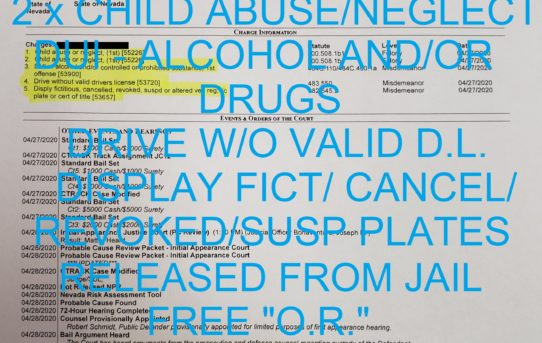"""2 x CHILD ABUSE/NEGLECT + DUI - ALCOHOL AND/OR                                    DRUGS + DRIVE W/O VALID D.L. + DISPLAY FICT/ CANCEL/REVOKED/SUSP PLATES - """"O.R."""" RELEASE JUDGE JOE BONAVENTURE"""