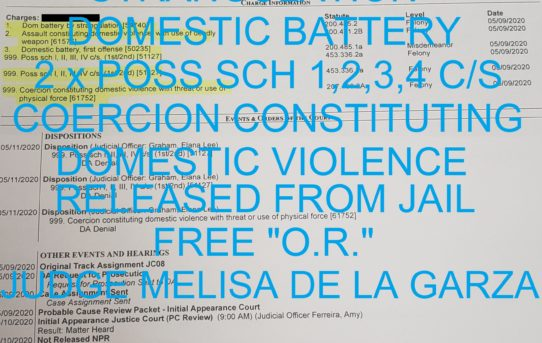 "DOM BATTERY BY               STRANGULATION  +     DOMESTIC BATTERY  +  2 x POSS SCH 1,2,3,4 C/S  COERCION CONSTITUTING      DOMESTIC VIOLENCE – ""O.R."" RELEASE JUDGE MELISA DE LA GARZA"