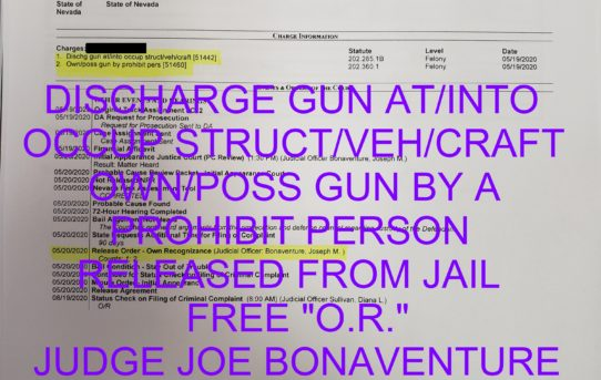 "DISCHARGE GUN AT/INTO     OCCUP STRUCT/VEH/CRAFT  + OWN/POSS GUN BY A              PROHIBIT PERSON - ""O.R."" RELEASE    JUDGE JOE BONAVENTURE"