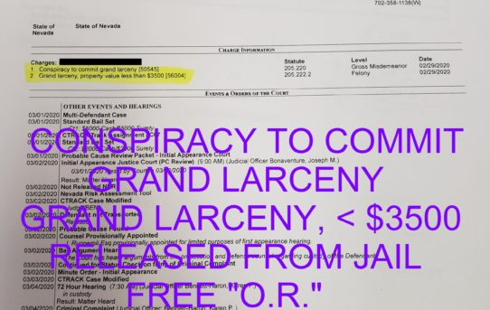 "CONSPIRACY TO COMMIT            GRAND LARCENY + GRAND LARCENY < $3500  - ""O.R.""    RELEASE JUDGE KAREN BENNETT"