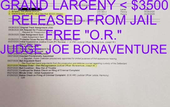"BURGLARY + GRAND LARCENY < $3500 - ""O.R."" RELEASE JUDGE JOE BONAVENTURE"