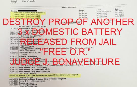 "DESTROY PROPERTY OF ANOTHER $250 - $5K + 3 x DOMESTIC BATTERY - ""O.R."" RELEASE JUDGE JOE BONAVENTURE."