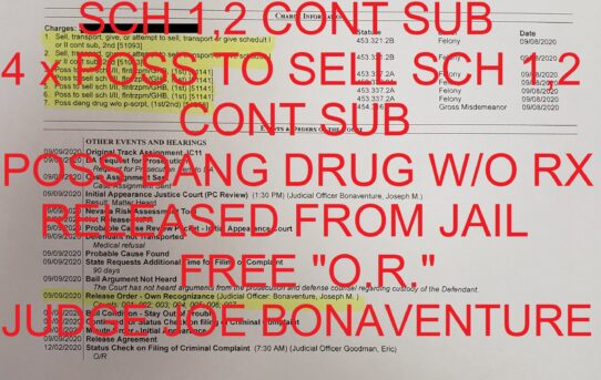"2 x SELL/TRANS/GIVE SCH 1,2 CONT SUB + 4 x POSS TO SELL SCH 1,2 + CONT SUB + POSS DANG DRUG W/O Rx - ""O.R."" RELEASE JUDGE JOE BONAVENTURE."
